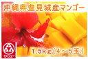 (3105)蔵≪濃厚な味と香りが魅力です☆≫【沖縄県・豊見城産マンゴー<4〜5玉/約1.5kg>】(送料込)≪※1)他商品…