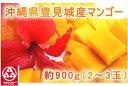 (3104)蔵≪濃厚な味と香りが魅力です☆≫【沖縄県・豊見城産マンゴー<2〜3玉/約900g>】(送料込)≪※1)他商品と…