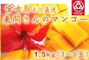 (3101)蔵≪今年も感動してください!1年間愛情を込めて育てた来間孝勇さんのマンゴー≫【宮古島 来間さんのマンゴ…