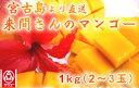 (3102)蔵≪今年も感動してください!1年間愛情を込めて育てた来間孝勇さんのマンゴー≫【宮古島 来間さんのマンゴ…