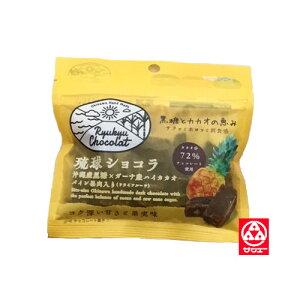 【ケンコーフーズ 琉球ショコラパイン果肉入り】