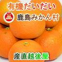 【フルーツ みかん 有機栽培だいだい】佐賀県 鹿島市 有機みかん佐藤農場有機栽培 だいだい 2.5kg採りたてを農園から産地直送 送料無料…