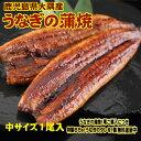 中サイズ 1尾入り 1尾130グラム 鹿児島県 大隅産 国産 税込 送料無料 うなぎの蒲焼 鰻