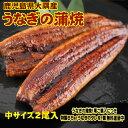 中サイズ 2尾入り 1尾130グラム 鹿児島県 大隅産 国産 税込 送料無料 うなぎの蒲焼 鰻
