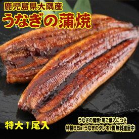 特大サイズ 1尾入り 1尾200グラム 鹿児島県 大隅産 国産 税込 送料無料 うなぎの蒲焼 鰻