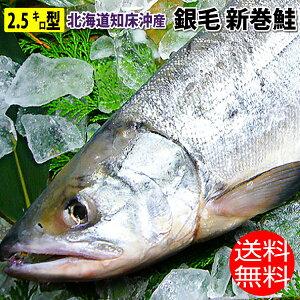 特選 国産 化粧箱入り 銀毛 新巻鮭 2.5キロ型