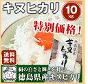 【送料無料】徳島キヌヒカリ(28年度産) 10kg絹の白さと輝きを持つお米です※北海道、沖縄及び離島は別途発送料金が発生します