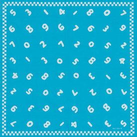 [10%OFFクーポン配布中]90cm幅 SOU・SOU×荒川 綿オックス風呂敷/so-su-u・水色 和柄 和文様