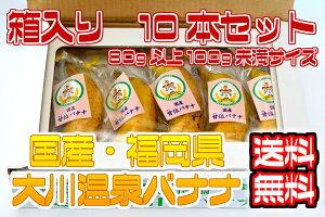 【国産温泉バナナ】S 10本入り(80g以上100g未満)