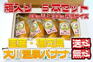 【国産温泉バナナ】S 5本入り(80g以上100g未満)