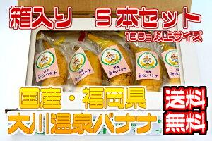 【国産温泉バナナ】100g以上5本入り 大川温泉フルボ酸源泉栽培 甘位バナナ