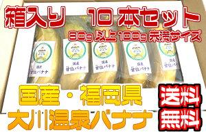 【国産温泉バナナS】80g以上100g未満10本入り 大川温泉フルボ酸源泉栽培 甘位バナナ