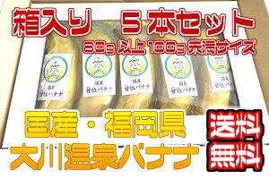 【国産温泉バナナS】80g以上100g未満5本入り 大川温泉フルボ酸源泉栽培 甘位バナナ