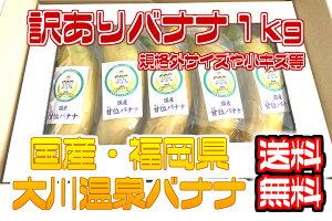 【国産温泉バナナ】訳あり1kg 大川温泉フルボ酸源泉栽培 甘位バナナ