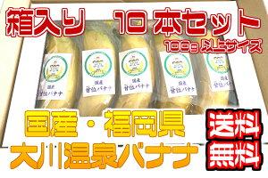 【国産温泉バナナ】100g以上10本入り 大川温泉フルボ酸源泉栽培 甘位バナナ