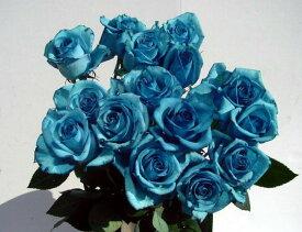 """""""ロイヤルブルー"""" 青バラ 1本 価格 生花 誕生日の花/新築祝い/開店祝い/【結婚祝い】【誕生日】【花】【楽ギフ_包装】記念日 プレゼントに 青い薔薇 青いバラ 青バラ ブルーローズ パーティー 飾り 彼氏に お礼 青色 花 ブルー系 結婚 出産 珍しい花"""