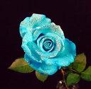 ラメ付きアイスブルー青バラ【本数指定で青バラ花束】(サプライズ 誕生日)【花】【楽ギフ_包装】【楽ギフ_メッセ入…