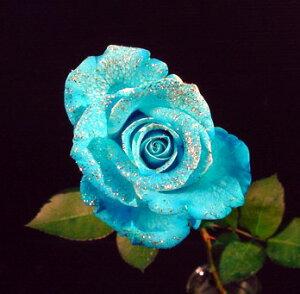 ラメ付きアイスブルー青バラ【本数指定で青バラ花束】一本 価格 (サプライズ 誕生日)【花】プレゼントに 青い薔薇 青いバラ 生花 1本 販売 ブルーローズ 誕生日 パーティー