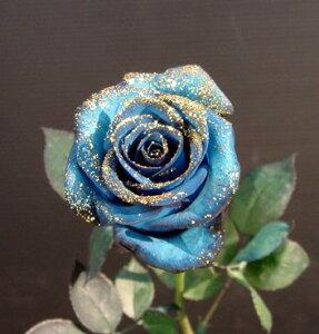 2020年4月【月間優良ショップ受賞】ラメ付きロイヤルブルー青バラ【生花】1本【本数指定で薔薇花束】価格 (サプライズ 誕生日)【花】プレゼント 青い薔薇 青いバラ 青バラ ブルーロ