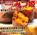 鹿児島県より産地直送 種子島安納紅「みつ姫」 1.8キロ さつまいも 唐芋 からいも カライモ