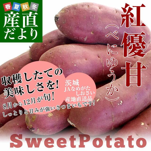 送料無料 茨城県より産地直送 JAなめがた さつまいも「紅優甘(べにゆうか)」 Sサイズ 約5キロ(25本から30本) さつま芋 サツマイモ