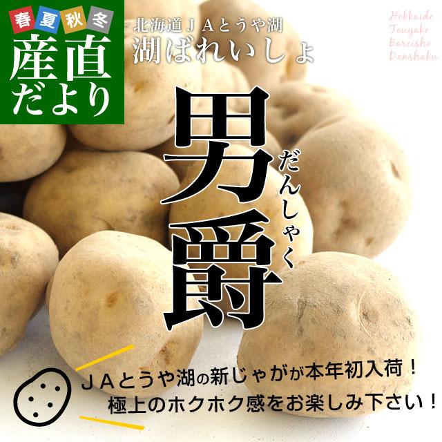 送料無料 北海道より産地直送 JAとうや湖のじゃがいも 湖ばれいしょ「男爵」 小玉M 10キロ 馬鈴薯