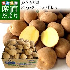 送料無料 北海道から産地直送 JAとうや湖 じゃがいも 湖ばれいしょ「とうや」 Lサイズ 10キロ 馬鈴薯 ジャガイモ