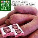 茨城県より産地直送 JAなめがたしおさい さつまいも「紅優甘 (べにゆうか)」 SからSSサイズ 1キロ×3箱セット 送料無…