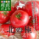 北海道より産地直送 下川町のスーパーフルーツトマト <北の極> 秀品 約800g SからL(8から15玉)