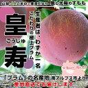 送料無料 山梨県より産地直送 JAこま野 プラム 皇寿 大玉サイズ 1.8キロ(7から9玉)