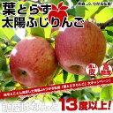 送料無料 青森県より産地直送 JAつがる弘前 葉とらず太陽ふじりんご 3キロ×2箱(9〜13玉×2箱)りんご、林檎、ふじ、サンふじりんご ※クール便