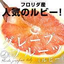送料無料 フロリダ産 グレープフルーツ (ルビー) 約4キロ 大玉サイズ 9玉から10玉