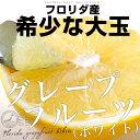 送料無料 フロリダ産 グレープフルーツ (ホワイト) 約4キロ 大玉サイズ 9玉