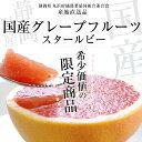 静岡県より産地直送 丸浜グレープフルーツ スタールビー 約4キロ(10玉から15玉)
