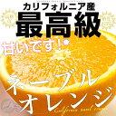 送料無料 カリフォルニア産 プレミアム品 極上ネーブルオレンジ 約4キロ (14から15玉)