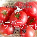 北海道より産地直送 下川町のスーパーフルーツトマト <北の極み> 秀 約800g SからL(8から15玉)