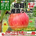 送料無料 青森県より産地直送 JAつがる弘前 極旨・産直りんご 選べる品種 約3キロ(9玉から13玉) 林檎 りんご…