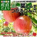 青森県より産地直送 JAつがる弘前 葉とらずつがるりんご 約3キロ(9から13玉) 林檎 りんご リンゴ