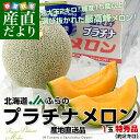 送料無料 北海道から産地直送 JAふらの 富良野プラチナメロン 1玉 特秀品(約2キロ)