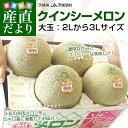 送料無料 茨城県産 JA茨城旭村 クインシーメロン 2Lから3Lサイズ 5キロ箱(4から5玉)