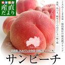 福島県より産地直送 JAふくしま未来 最高級ブランド桃 「サンピーチ」3キロ(9から11玉) もも