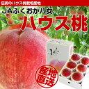福岡県より産地直送 JAふくおか八女 ハウス桃 1キロ箱(5玉から6玉)
