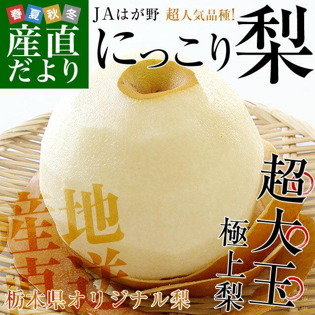 送料無料 栃木県より産地直送 JAはが野 にっこり梨 大玉(4から5玉)優品以上 約5キロ