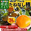 送料無料 和歌山県より産地直送 JA紀の里 たねなし柿 大玉3Lサイズ 約3.75キロ(14玉)