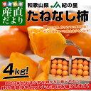 送料無料 和歌山県より産地直送 JA紀の里 たねなし柿 合計4キロ 2キロ×2箱(10玉から12玉入り×2箱) カキ かき 柿