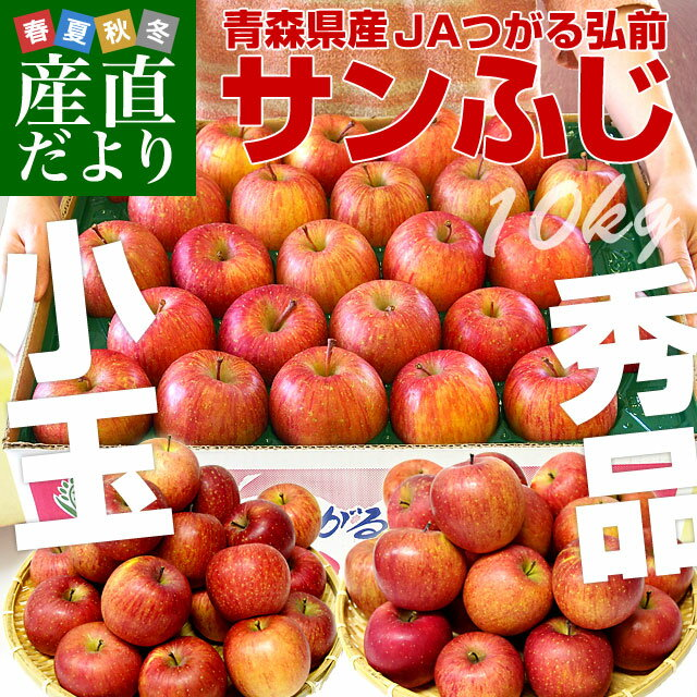 送料無料 青森県より産地直送 JAつがる弘前 サンふじリンゴ 小玉 10キロ(50から56玉入)