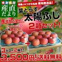 2018年発送 送料無料 青森県より産地直送 JAつがる弘前 葉とらず太陽ふじりんご 糖度13度以上 約3キロ×2箱(9から13玉×2箱) 林檎 りんご リンゴ