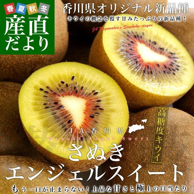 送料無料 香川県より産地直送 JA香川県 キウイフルーツ さぬきエンジェルスイート 約1.2キロ (10から14玉) キウイフルーツ