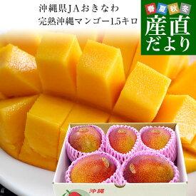 沖縄県より産地直送 JAおきなわ 完熟沖縄マンゴー 約1.5キロ (3玉から6玉入) 送料無料 まんごー アップルマンゴー