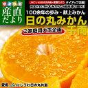 送料無料 愛媛県より産地直送 JAにしうわ 日の丸みかん 千両 ご家庭用2Lサイズ 約5キロ(約35玉)